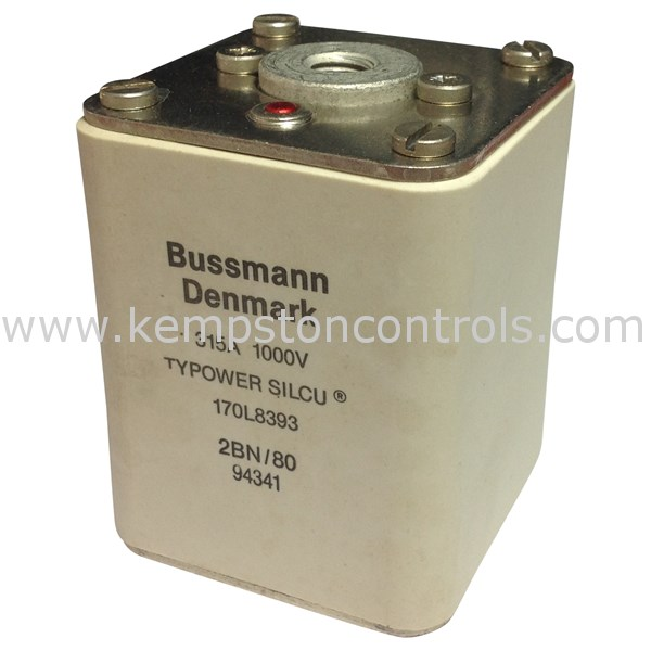 Bussmann - 170L8393